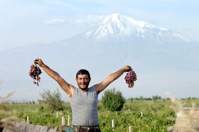 Armenian grapes